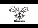 Mosquito party