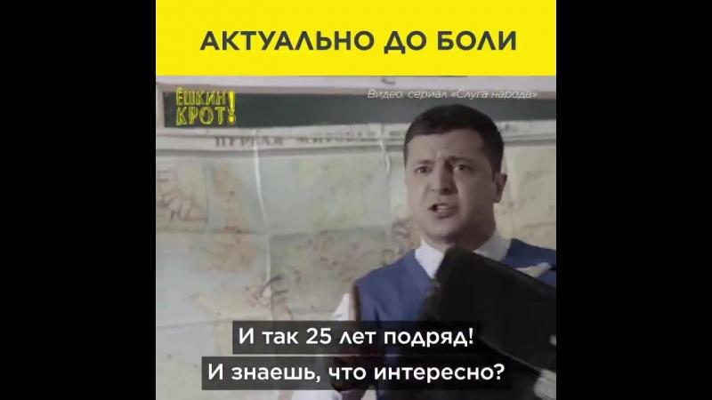 Владимир Зеленский, сыграл президента Васю в сериале «Слуга народа»