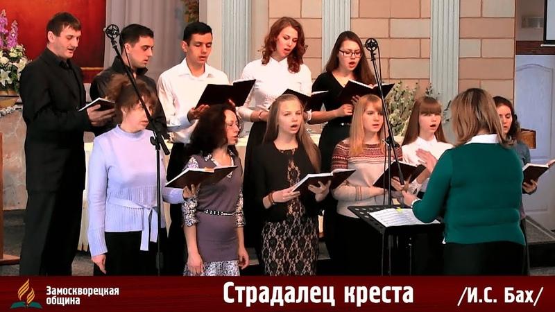 Пение хора Страдалец креста (И.С. Бах) 29.03.2014
