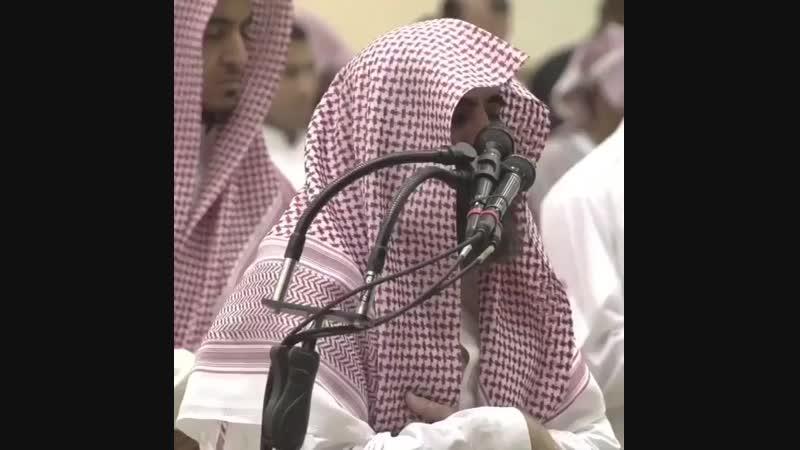 - quran _black_heart_ Хасан аль-Басри сказал_ _hibiscus__dove_ «О сын Адама! Как твое сердце может смягч ( 640 X 640 ).mp4