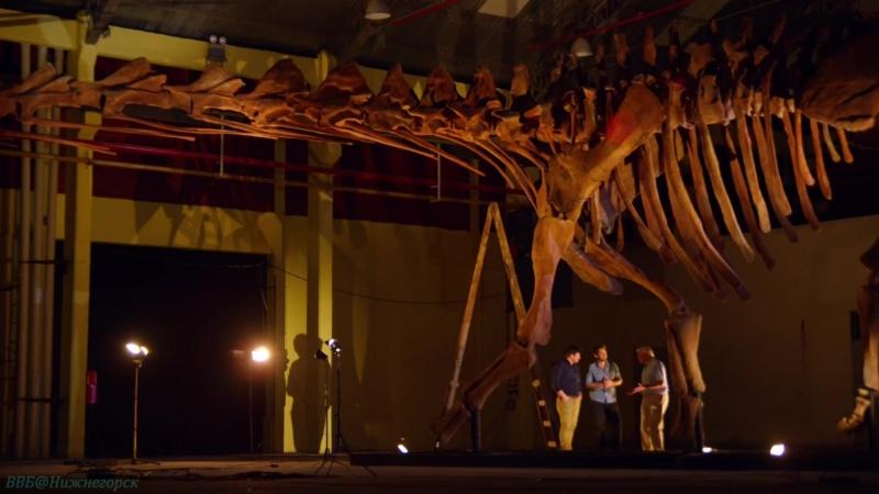 BBC «Аттенборо и гигантский динозавр» (Познавательный, история, исследования, палеонтология, 2016)