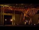 BBC «Аттенборо и гигантский динозавр» Познавательный, история, исследования, палеонтология, 2016
