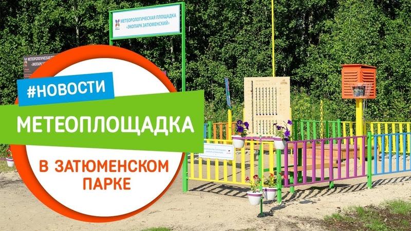 Детская метеостанция в Затюменском парке