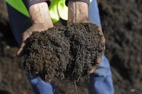 3 способа сделать почву плодородной. Дачники не понаслышке знают, что для получения богатого урожая надо хорошенько потрудиться. Иначе какой смысл держать огород! 1. Незаменимая органика В