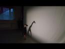 Длинношеее животное) Детский театр Танца и СветоТени Plazma . Студия Пируэт. Петрозаводск.