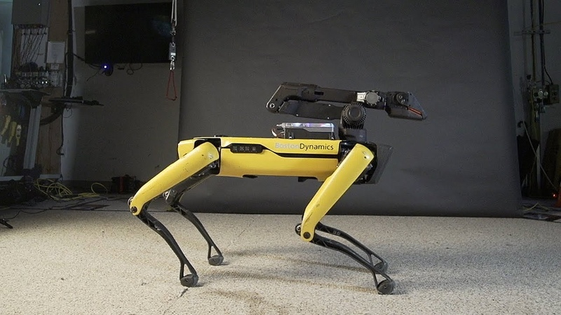 O vídeo que mostra que um futuro dominado por robôs pode não ser tão ruim