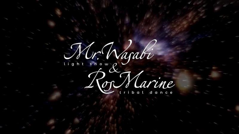 Световое шоу Mr. Wasabi и RosMarine на большом космическом шоу