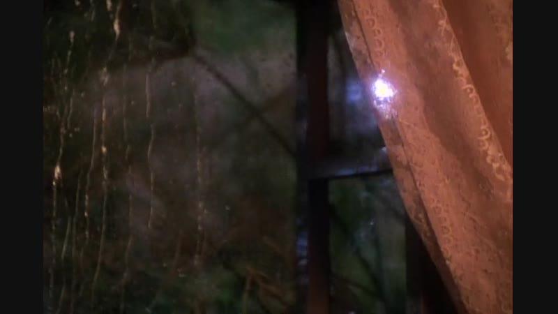 Звездный Путь: Глубокий Космос 9. The Visitor / Посетитель (S04E03)