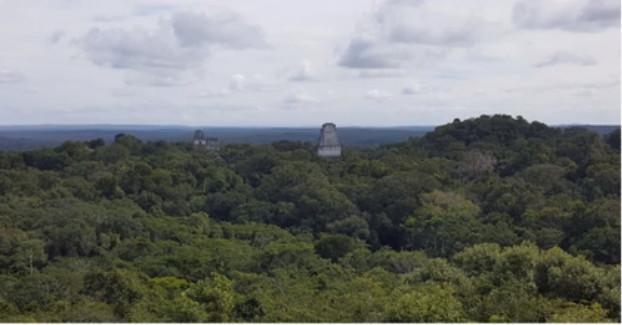 Крупное открытие: цивилизация майя оказалась намного сложнее, чем мы думали 7kBttxkTj9I