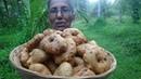 Village Food ❤ Crispy Medu Vada with Sambal by Grandma