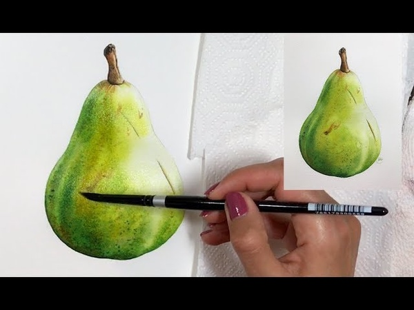 Painting a Pear in Watercolor Realistic Art