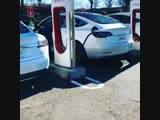 Tesla Adele Challenge