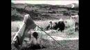 Zem spieva (1933) - Žatva pod