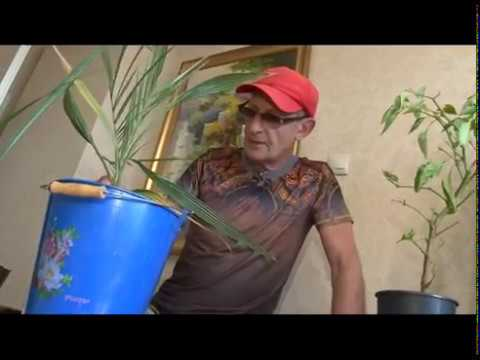 Неухоженные цветочки.Сергей Богатский:Три минуты о загородной жизни