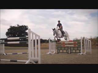 Castle - Horse Video
