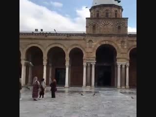 La mosquée de zaytouna en tunisie