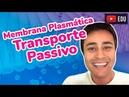 Membrana Plasmática Transporte Passivo Prof Paulo Jubilut