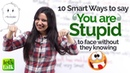 How to say 'You Are Stupid' to someone's face? Learn 10 Smart Phrases   Funny English Lesson Plan
