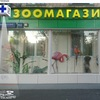 Zoociti на Тимирязевской