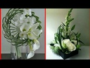 Beautiful Different Flower Decor style latest collection of flower decoration