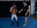 シュートボクシング Shootboxing Techniques