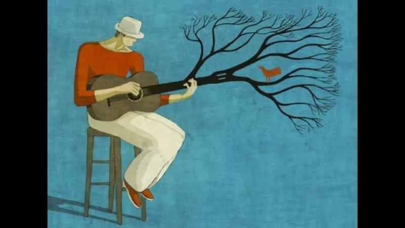 Toni Demuro Illustration Maisam Shahi Animation