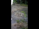 вот так на Радищева 1 всегда после дождя потому что не чистят