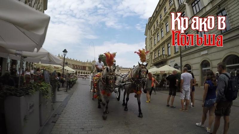 Польша, Краков, Август, 18 [Poland, Krakow, August,18]