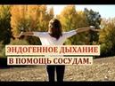Эндогенное дыхание в помощь сосудам. Алена Дмитриева.