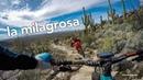 La Milagrosa   Tucson's Best Descent