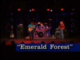 Victor Wooten &amp Steve Bailey - emerald Forest