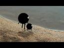Making of Паук Амик.: Паучок рисует собаку на песке / Работа с масками в After Effects CS6