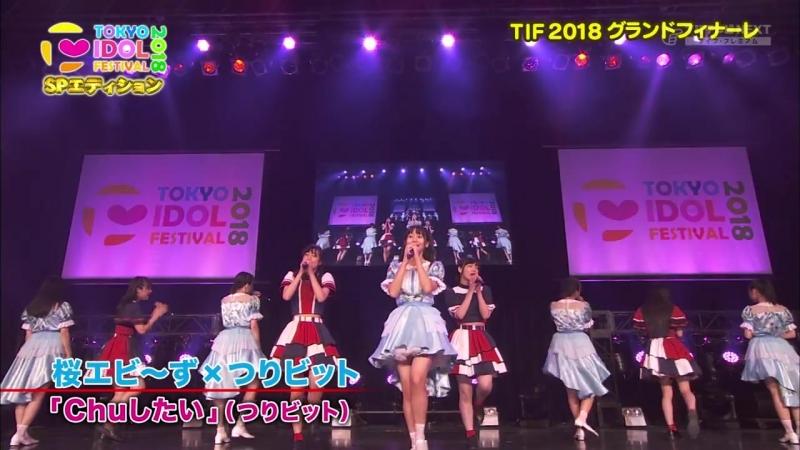 Rock A Japonica, Sakura Ebi's, Hachimitsu Rocket. TIF 2018