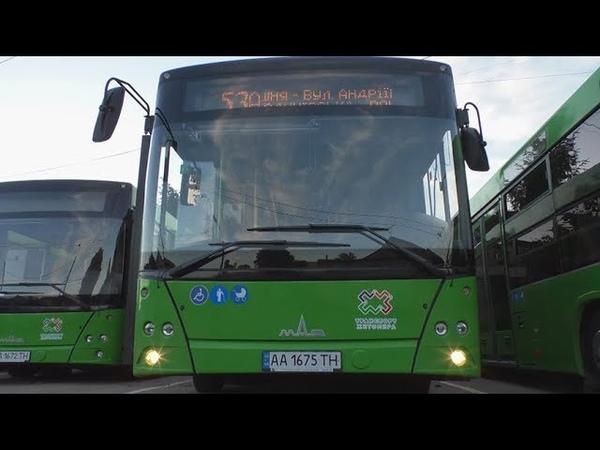Чотирнадцять нових комунальних автобусів вийшли на маршрути в Житомирі
