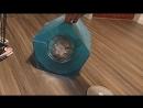 Шиншилла и кошка
