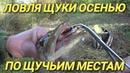 Ловля щуки осенью.Разведка по щучьим местам.Рыбалка