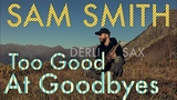 Sam Smith - Too Good At Goodbyes Derli Sax Cover