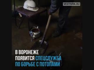 У Воронежа появился шанс не превращаться в Венецию. после дождей