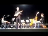 Herr Ulrich Stoll (Fidel) und das Kammerorchester der Musikschule Frankfurt am Main e.V. 2014