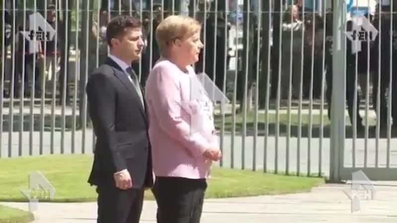 ️ En Allemagne, pendant la rencontre avec Zalensky, regardez comment Merkel tremble . - Les services de la chancellerie disent q