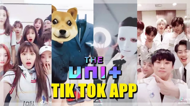 THE UNIT TIK TOK APP 틱톡 Kijoong Somyi Feeldog Jiwon Seungjin Hyunjoo Seyong and more