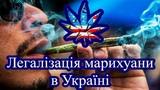 Легалзаця марихуани в Укран Так чи Н