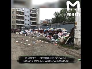 Челябинск превратился в свалку из-за войны чиновников и бизнесменов