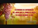(V) - Testimonios de experiencias del juicio ante el trono de Cristo y de haber recibido la vida