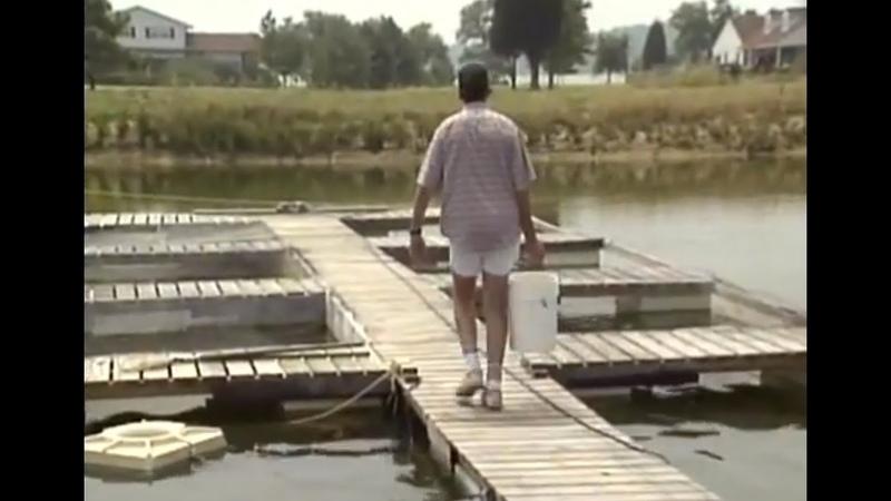 Cage Culture Raising Fish in Ponds