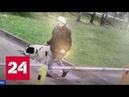 В Новой Москве алабай покусал девушку хозяин пса держит в страхе весь поселок - Россия 24