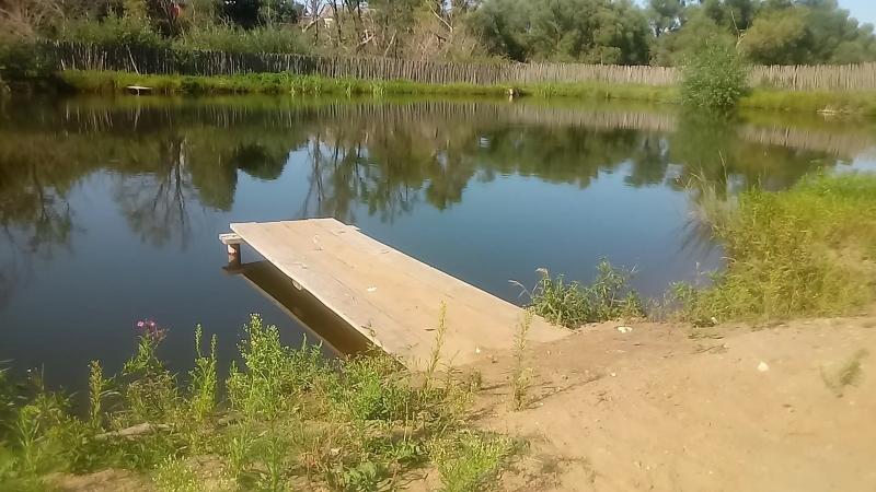 Летний день на Ушаковской поляне. Начало.