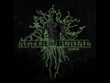 After The Burial - Berzerker (Cover)