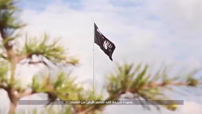 Вербовщики - Как вербуют в ИГИЛ Приёмы идеологов смерти