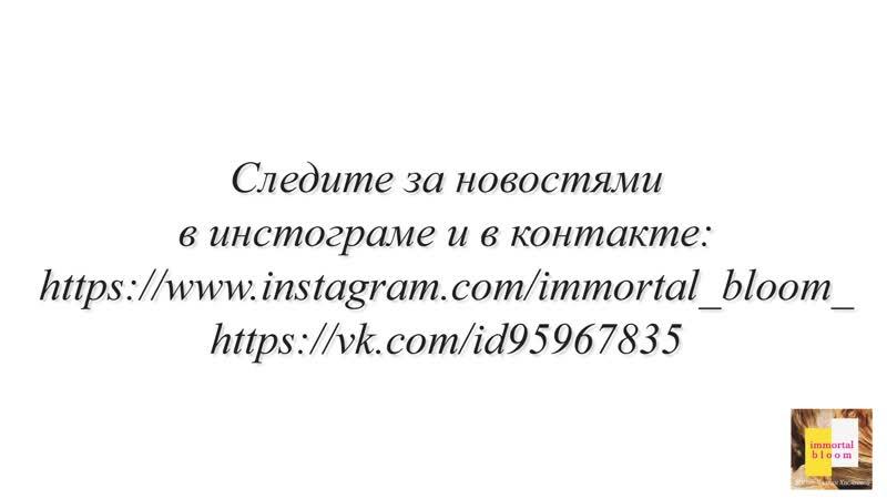 Промо-ролик Пион Махровый из холодного фарфора - Мастер Чулпан Хисмеева